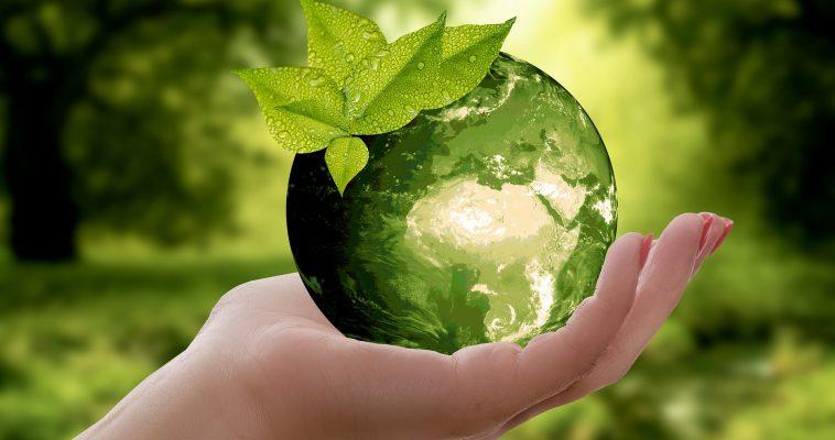 8 maneiras de ser mais sustentável