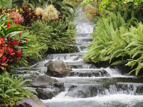 Consciência ambiental – economia de água preserva mananciais